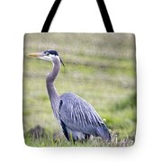 Blue Heron In Northern Wa  Tote Bag