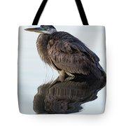 Blue Heron In Reflection, St. Marks Wildlife Refuge, Florida Tote Bag