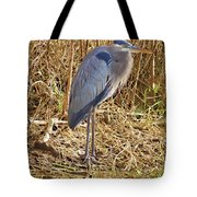 Blue In Blue Springs 2010 Tote Bag