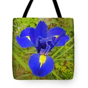 Blue Iris Beauty Tote Bag