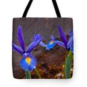 Blue Iris Germanica Tote Bag
