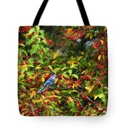 Blue Jay And Berries Tote Bag
