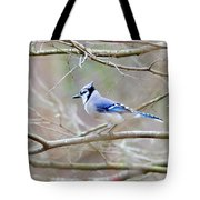 Blue Jay Tote Bag by George Randy Bass