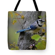 Blue Jay In Red Bud Tote Bag