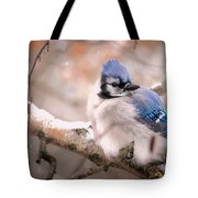 Blue Jay In Winter Tote Bag