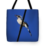 Blue Jay Meal Time Tote Bag