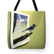 Blue Jay Perched Tote Bag