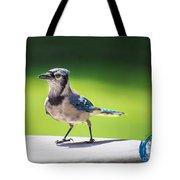 Blue Jay Walk Tote Bag