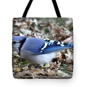 Blue Jay With A Full Mouth Tote Bag