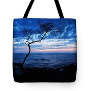 Blue Kona Tote Bag
