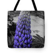 Blue Lupin Colour Pop Tote Bag