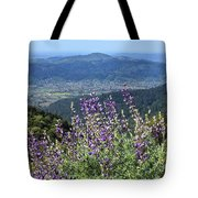 D3b6377-blue Lupine And Kenwood  Tote Bag