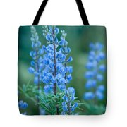 Blue Lupine In The Tetons  Tote Bag