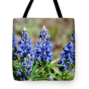 Blue Lupines Tote Bag