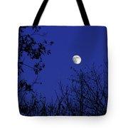 Blue Moon Among The Tree Tops Tote Bag