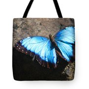 Blue Morpho #2 Tote Bag