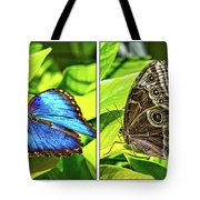 Blue Morpho Butterfly Diptych Tote Bag