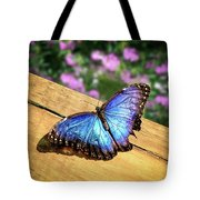 Blue Morpho Butterfly On A Wooden Board Tote Bag