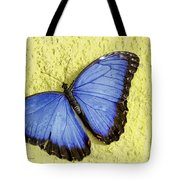Blue Morpho Butterfly Tote Bag by Richard J Thompson
