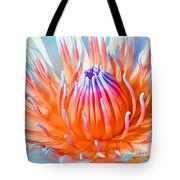 Blue Orange Lily Tote Bag