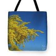 Blue Palo Verde Tree-signed-#2343 Tote Bag