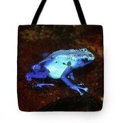 Blue Poison Dart Frog - Dendrobates Azureus Tote Bag