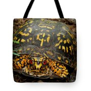 Blue Ridge Box Turtle Tote Bag