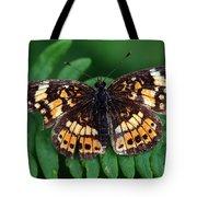 Blue Ridge Butterfly Tote Bag