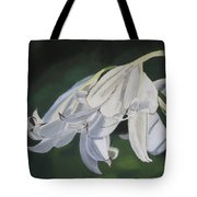 Blue Ridge Lilly Tote Bag