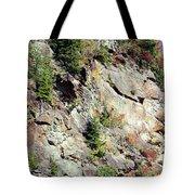 Blue Ridge Mountain Tote Bag
