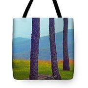 Blue Ridge Mountains Of Virginia Tote Bag