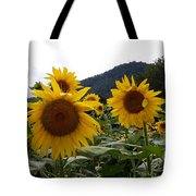 Blue Ridge Sunflowers  Tote Bag