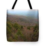 Blue Ridge View Tote Bag