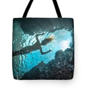 Blue Room Tote Bag