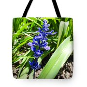 Blue Sage Tote Bag