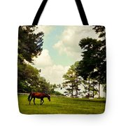 Blue Skies And Pines Tote Bag