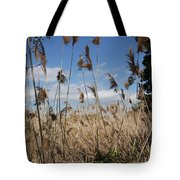 Blue Sky And Seaoats Tote Bag
