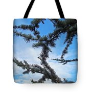 Blue Sky Art Prints White Clouds Conifer Pine Branches Baslee Troutman Tote Bag