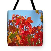 Blue Sky Autumn Art Prints Colorful Fall Tree Leaves Baslee Tote Bag