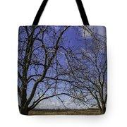 Blue Sky December Tote Bag