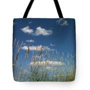 Blue Sky Drive-in Tote Bag