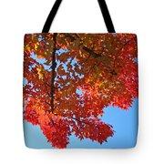 Blue Sky Red Autumn Leaves Sunlit Orange Baslee Troutman  Tote Bag