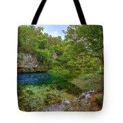 Blue Springs II Tote Bag