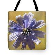 Blue Star #2 Tote Bag