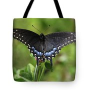 Blue Tailed Black Butterfly Tote Bag