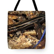 Blue Tailed Skink Tote Bag