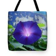 Blue Teefull Tote Bag