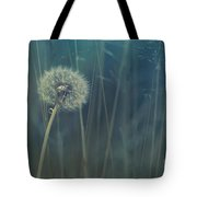 Blue Tinted Tote Bag by Priska Wettstein