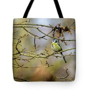 Blue Tit Woods Tote Bag