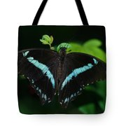 Blue Triangle Butterfly Tote Bag